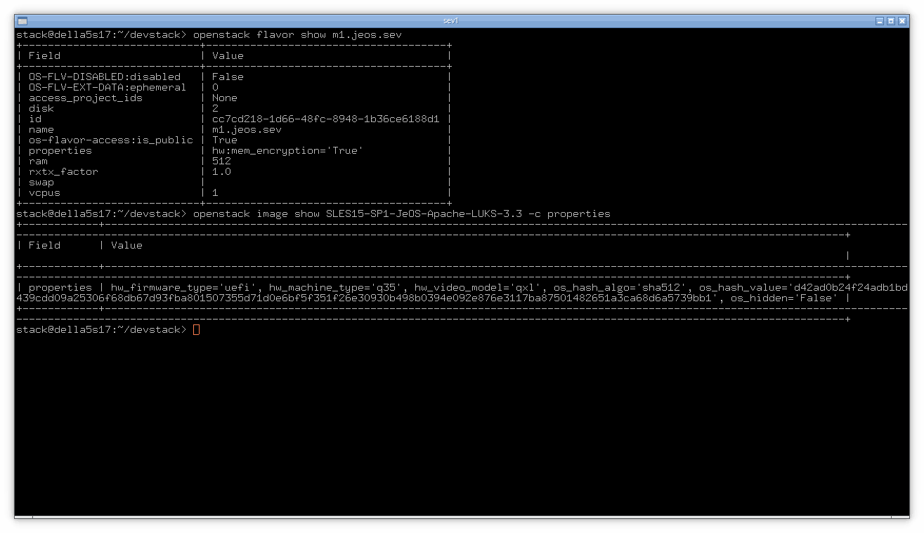 Enabling SEV via CLI. Click for full size.